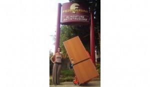 elektryczne schodołazy towarowe do przewozu okien drzwi liftplus (17)
