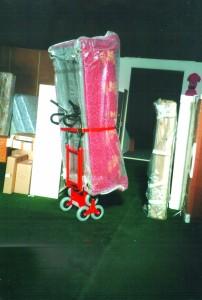 elektryczny schodołaz wózek towarowy MARIO